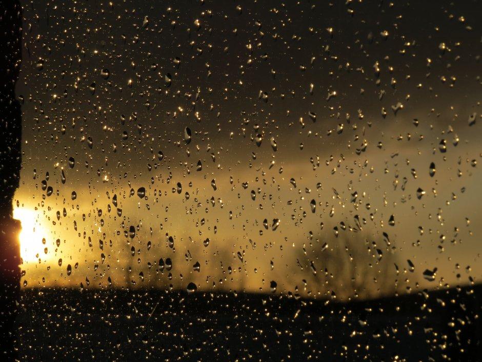 Regen En Zonneschijn : Na regen de zonneschijn zeelandnet foto