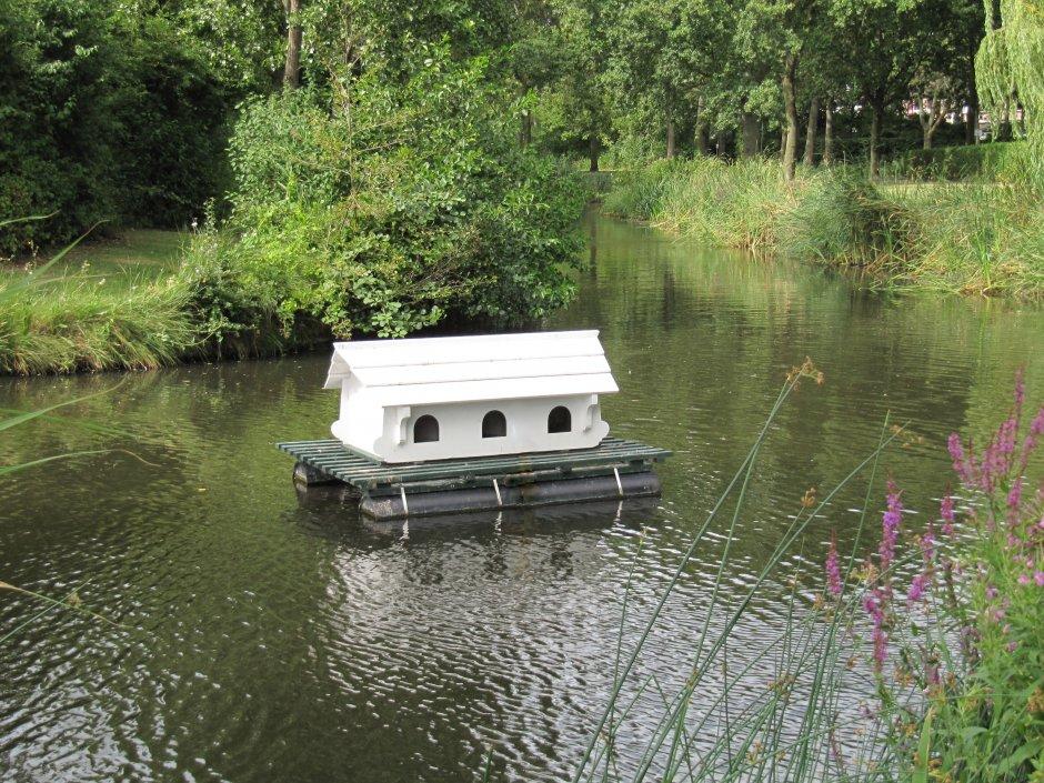 Te huur huisje op het water zeelandnet foto for Huisje te koop