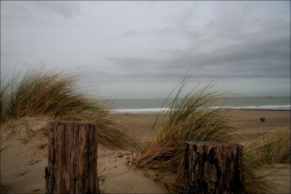Strand Cadzand